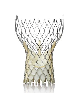 medtronic corevalve cath lab hybrid or heart valve repair study TCT 2013