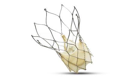 st. jude portico transcatheter aortic heart valve repair hybrid or
