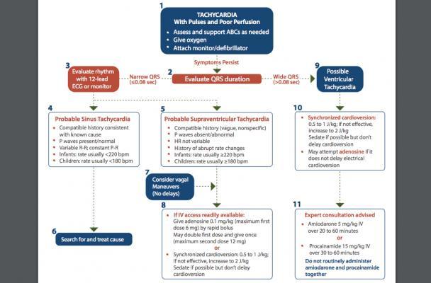 This is the AHA pediatric tachycardia PALS algorithm flow sheet.
