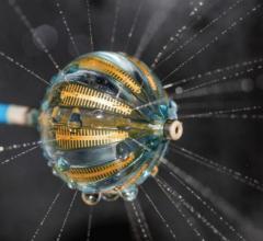 Biosense webster multielectrode balloon RF ablation catheter