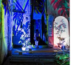 Lighting design Monstera Deliciosa in the palace Palazzo di Napoli in the heart of Palermo.