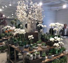 Bloomr at Codarus showroom