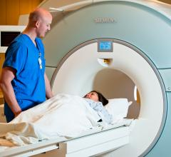 3-D-printed Model of Stenotic Intracranial Artery Enables Vessel-Wall MRI Standardization