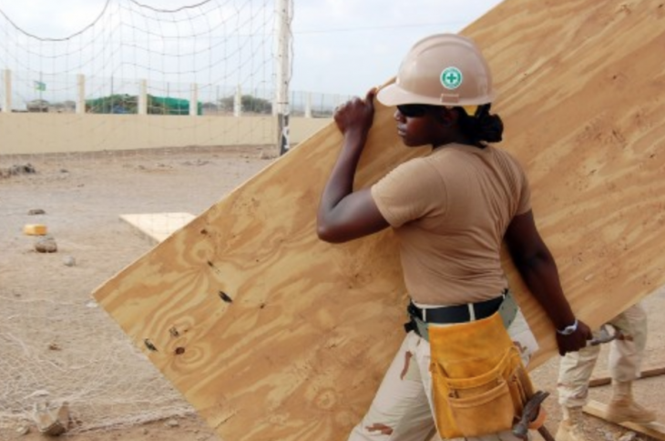 Woman_with_hard_hat_carrying_plywood