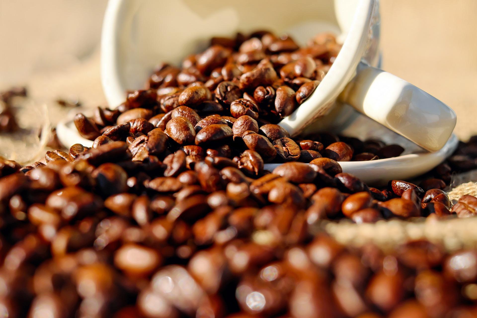 COFFEE STOCK LOGO