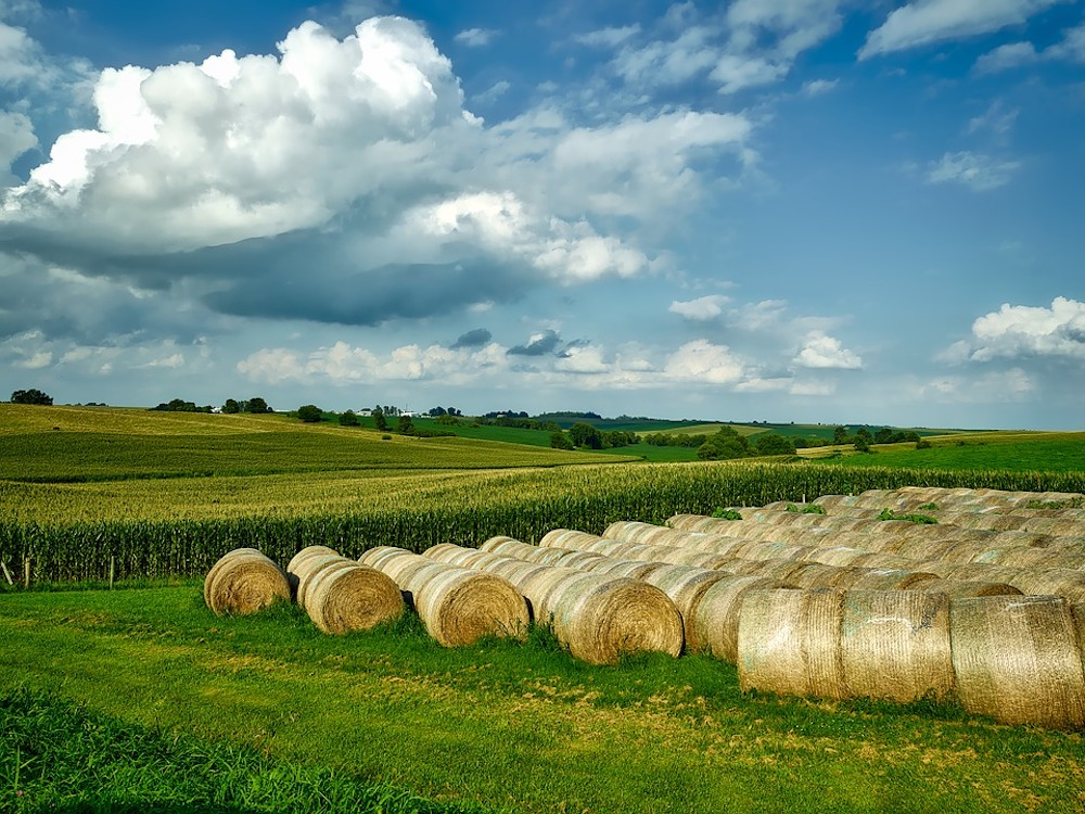 Several Iowa farming organizations call for increased tax funding from state